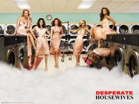 Desperate Housewives Series Poster