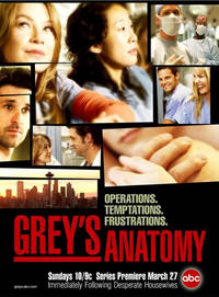 Grey's Anatomy Sezona 6 Poster